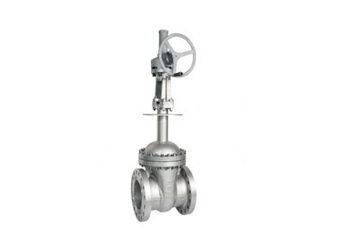 API 600 Cryogenic Bolted Bonnet Cast Steel Gate Valve, Extended Stem Gate Valve